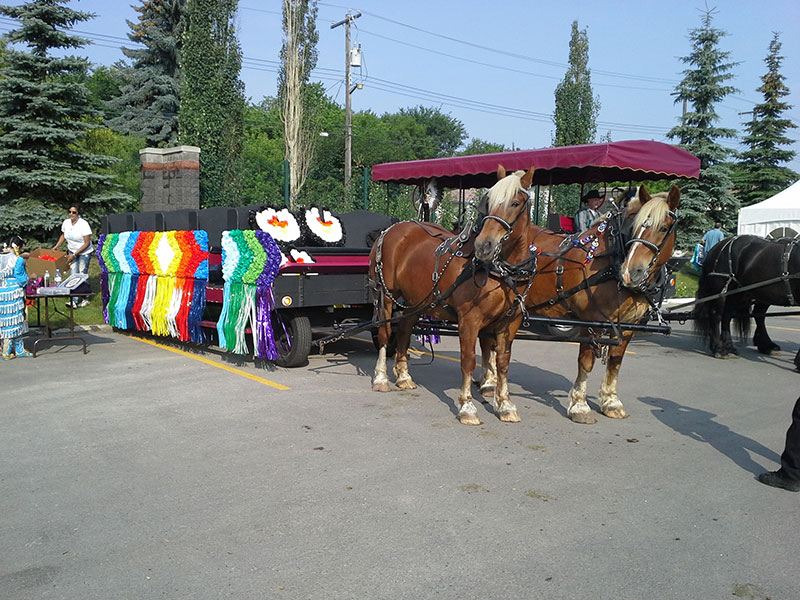 horses with float wagon
