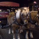 Wagon ride downtown