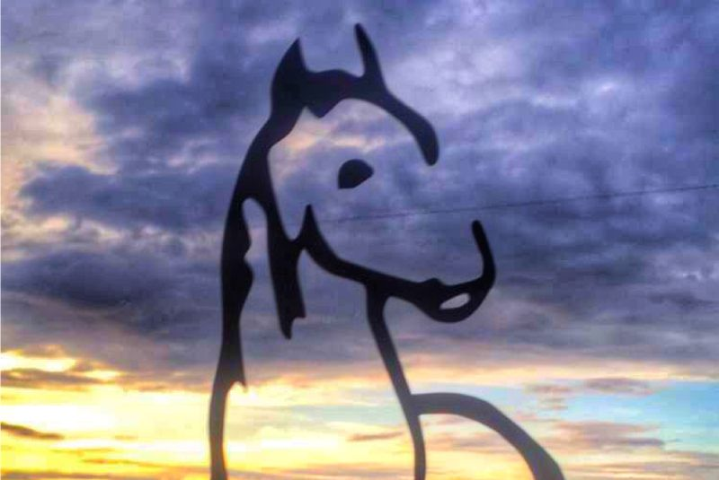 horse silhouette with sunset