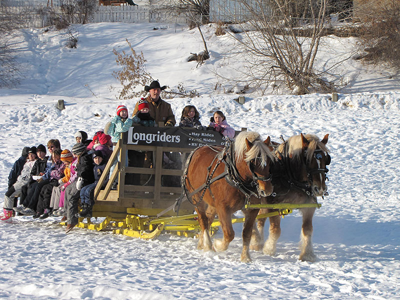 Winter horse sled ride